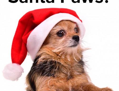 Christmas Pronunciation Jokes